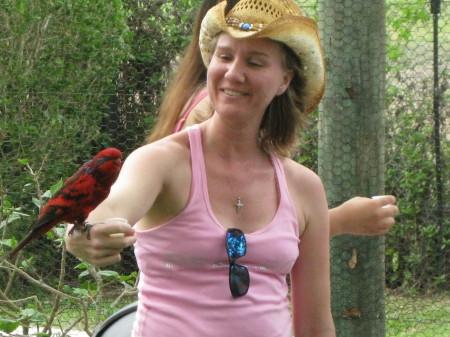 Paula Mancino  (Metzger)