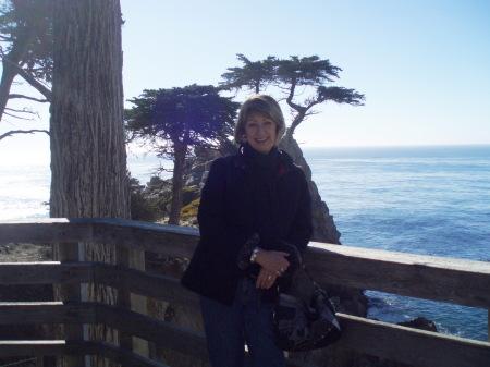 Kathy Curtis (Wilson)