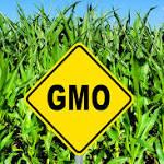 Senate Passes GMO Labeling Legislation