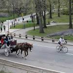 NYC mayor on cusp of possible horse carriage deal