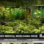 Fight brewing under Gold Dome over medical marijuana