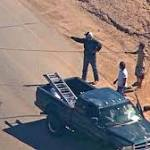Llama chase in Arizona captivates nation; at one point, 3 were on the run