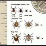 Tiny Threats: Ticks Pose Serious Health RisksTopical BioMedics Offers Tips for ...