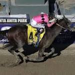 Secret Circle charges to victory in Breeders' Cup Sprint