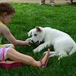 Puppy without a Paw Gifted to a Toddler Without Feet; Toddler Sapphyre ...