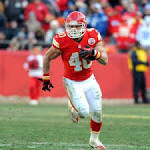Peyton Hillis, other RBs work out for Giants