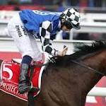 Horse Racing-Protectionist wins Melbourne Cup, favourite dies