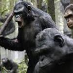 Box office report: 'Apes' conquers, 'Boyhood' starts strong