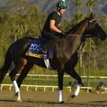 Veterans dominate at Breeders' Cup