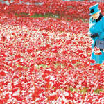 Tower of London's poppy installation creates national sensation