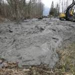 Washington landslide death toll rises to 17