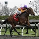 California Chrome's race toward horse racing Triple Crown began at Central ...