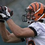 Bengals: New tight end lines up all over field