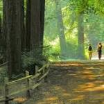Butt out: Smoking banned in East Bay regional parks