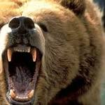 Bears of the Day: Analysts Raise Red Flags on CTI BioPharma Corp (CTIC) and SolarCity Corp (SCTY)