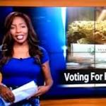 TV reporter who quit on-air to run pot business had been subject of complaints ...