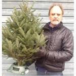 Christmas tree seller sees busier Black Friday than usual
