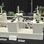 Legalization of marijuana a hot topic at Augusta trade show