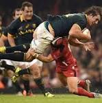 Wales 12 South Africa 6: Warren Gatland's men beat southern hemisphere team ...