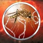 Kansas Has 32 Total Cases Of West Nile Virus