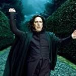 Fantastic Beasts star reveals his favorite Harry Potter book, film