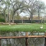 Hail kills zoo animals, complicates rescues by firefighters