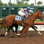 Up the Backstretch: Dortmund earning Kentucky Derby top ranking