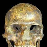 Ancient Russian's DNA sheds light on Neanderthal interbreeding