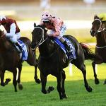 Luke Nolen's combination with Black Caviar rates as the peak of his career