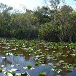 Fla. lawmakers OK plan for Everglades restoration