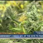 Amendment 2: Medical marijuana initiative defeated in Florida