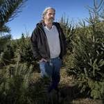 In big year for live Christmas trees, one KC area farm goes dark