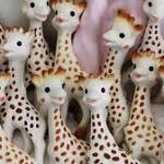 Sophie the Giraffe: Should you be worried about mold in your child's teething toy?