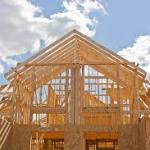U.S. home starts fall 2 percent in January as builder confidence dips due to cold ...