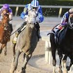 Florida Derby offers prelim as main event
