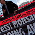 Monsanto Sued by Farmer Over Gene-Altered Seed Release