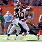 How to watch Ravens vs. Bengals 2014 online: Time, TV schedule, radio and ...