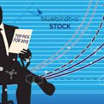 Bluebird Bio Stock Spikes On New Blood Treatment