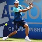 Hewitt, Querrey move on in London
