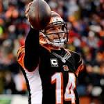 Cincinnati Bengals at Pittsburgh Steelers 12/15/13 NFL Score, Recap, News and ...