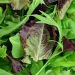 Deadly Listeria Outbreak Linked to Dole Salads Expands to 9 States, 18 Sick