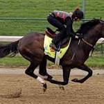Verrazano favored in deep Travers