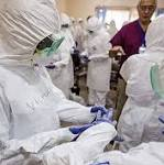 'Ebola Would Not Be What It Is Today' If Proper Health Systems Existed, Expert ...