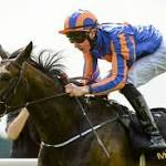 Magician ruled out as Lee prepares for Breeders' test