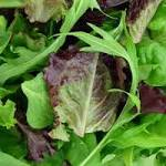 FDA Test Confirms Listeria in Bagged Salad from Dole's Springfield Plant