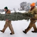 Local Farm Helps Siouxlanders Find The Perfect Christmas Tree