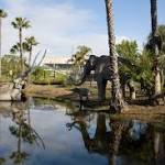 See Fossils Up Close and Personal, La Brea Tar Pits Reopen