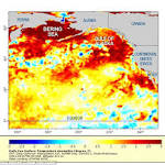 The Pacific Ocean may have entered a new warm phase — and the ...