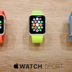 Apple's watch probably won't be 'home run,' says VC