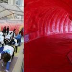 Take a trip inside giant inflatable colon